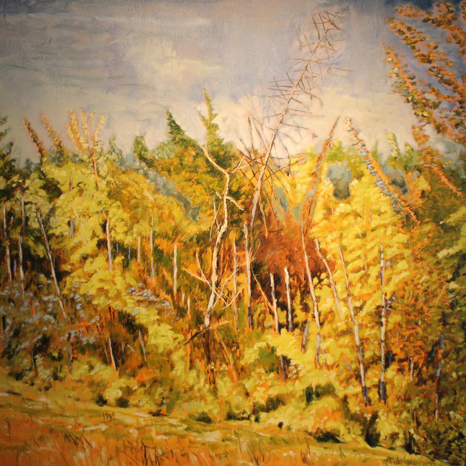 RIVER VALLEY GLOW - 49X49 - OIL ON CANVAS - 2012