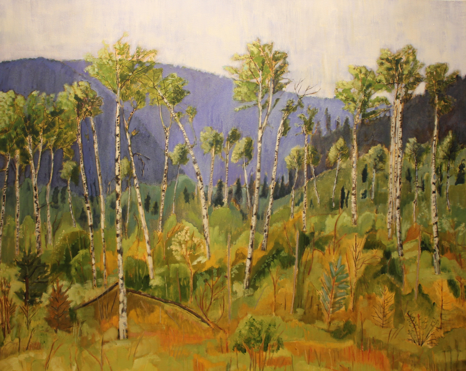 CHERRY RIDGE THROUGH THE TREES - 40 X 50 - OIL ON CANVAS - 2014