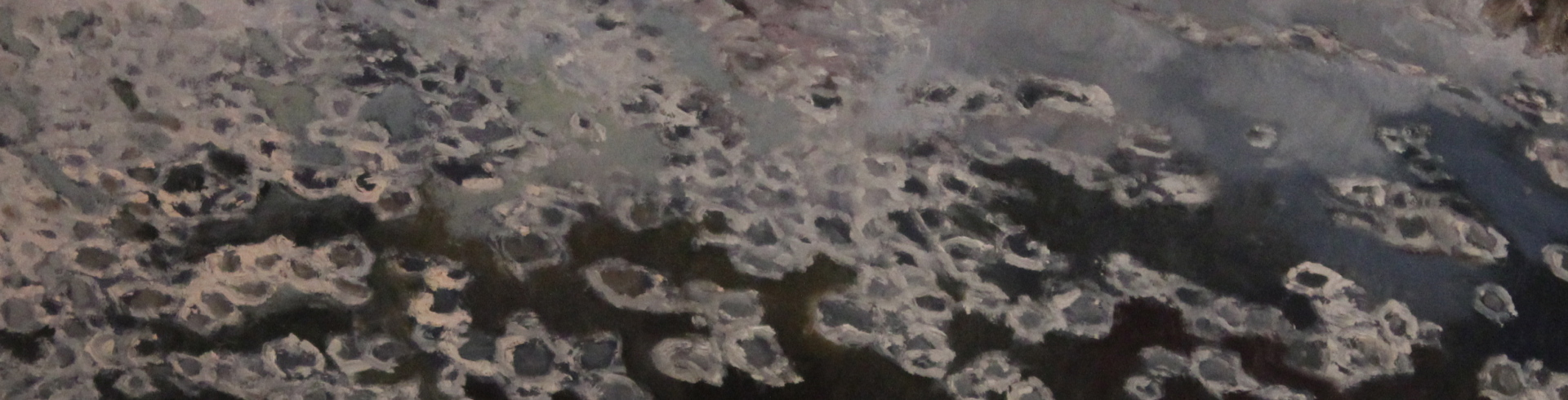 ICE FLOW SERIES - 10X34 - OIL ON PANEL - 2008