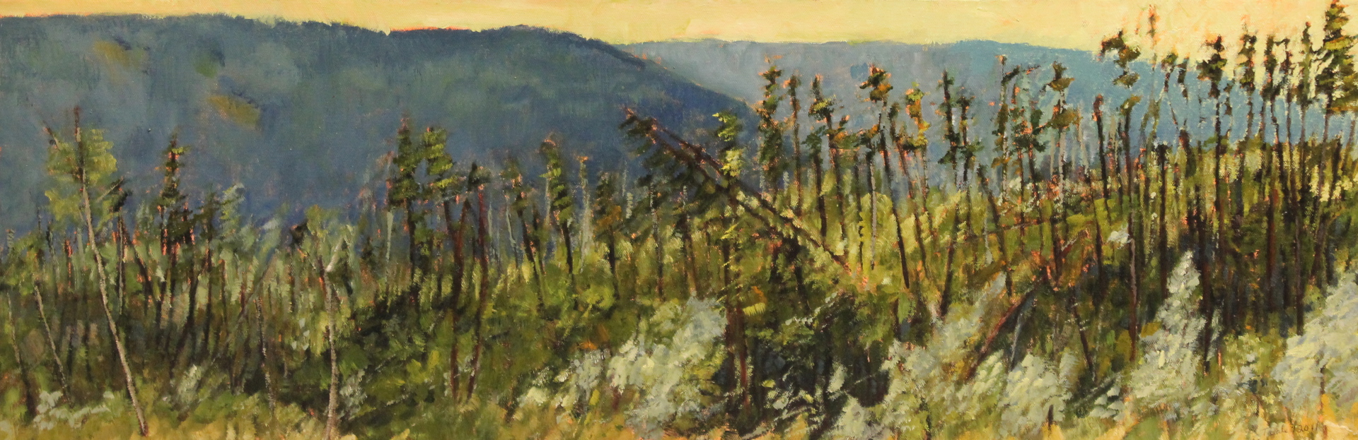 CHERRY RIDGE STUDY - 12 X 36 - OIL ON CANVAS - 2011