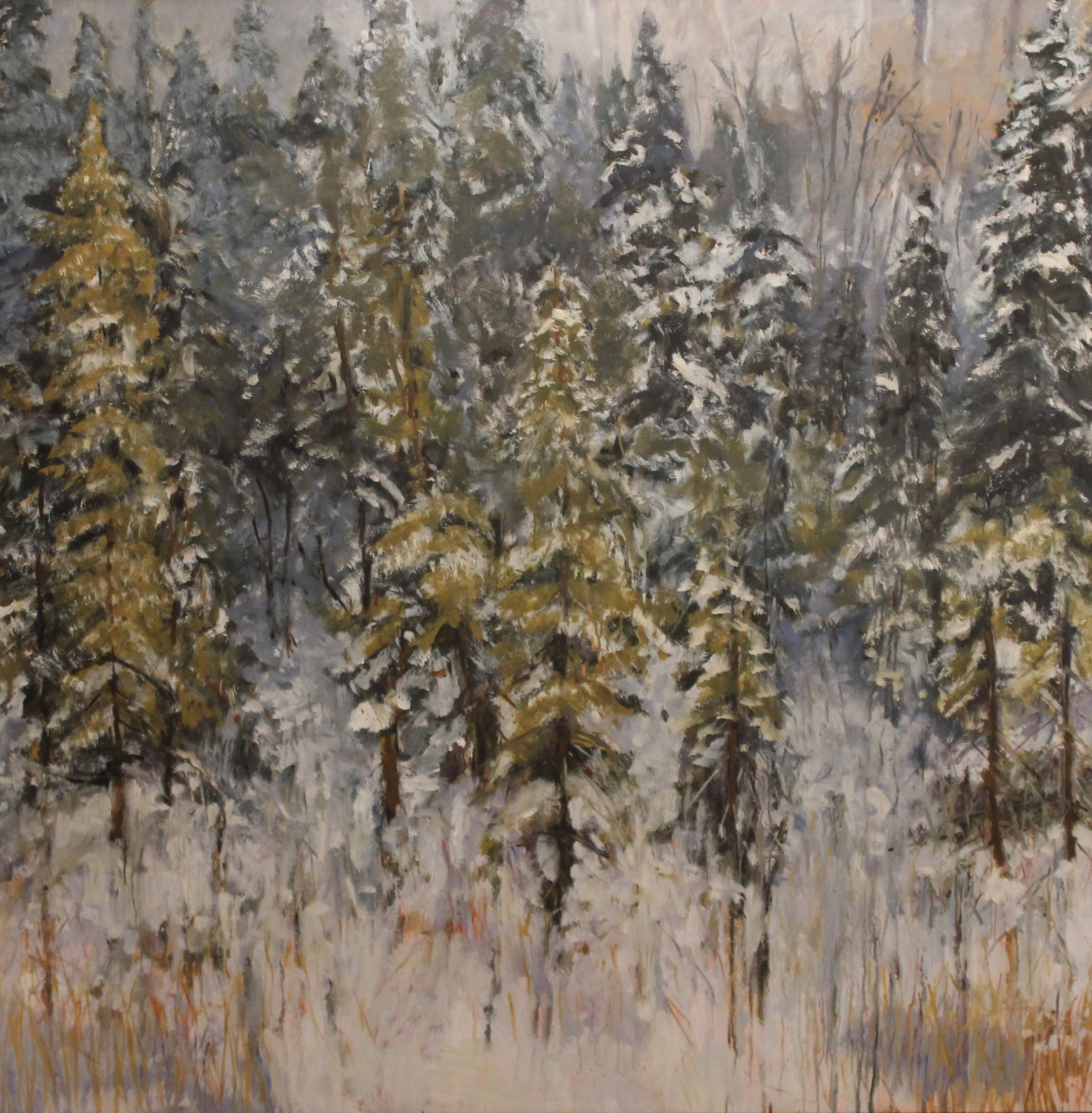 VICTORIA TRAIL PARK - 48 X 48 - OIL ON PANEL 2009