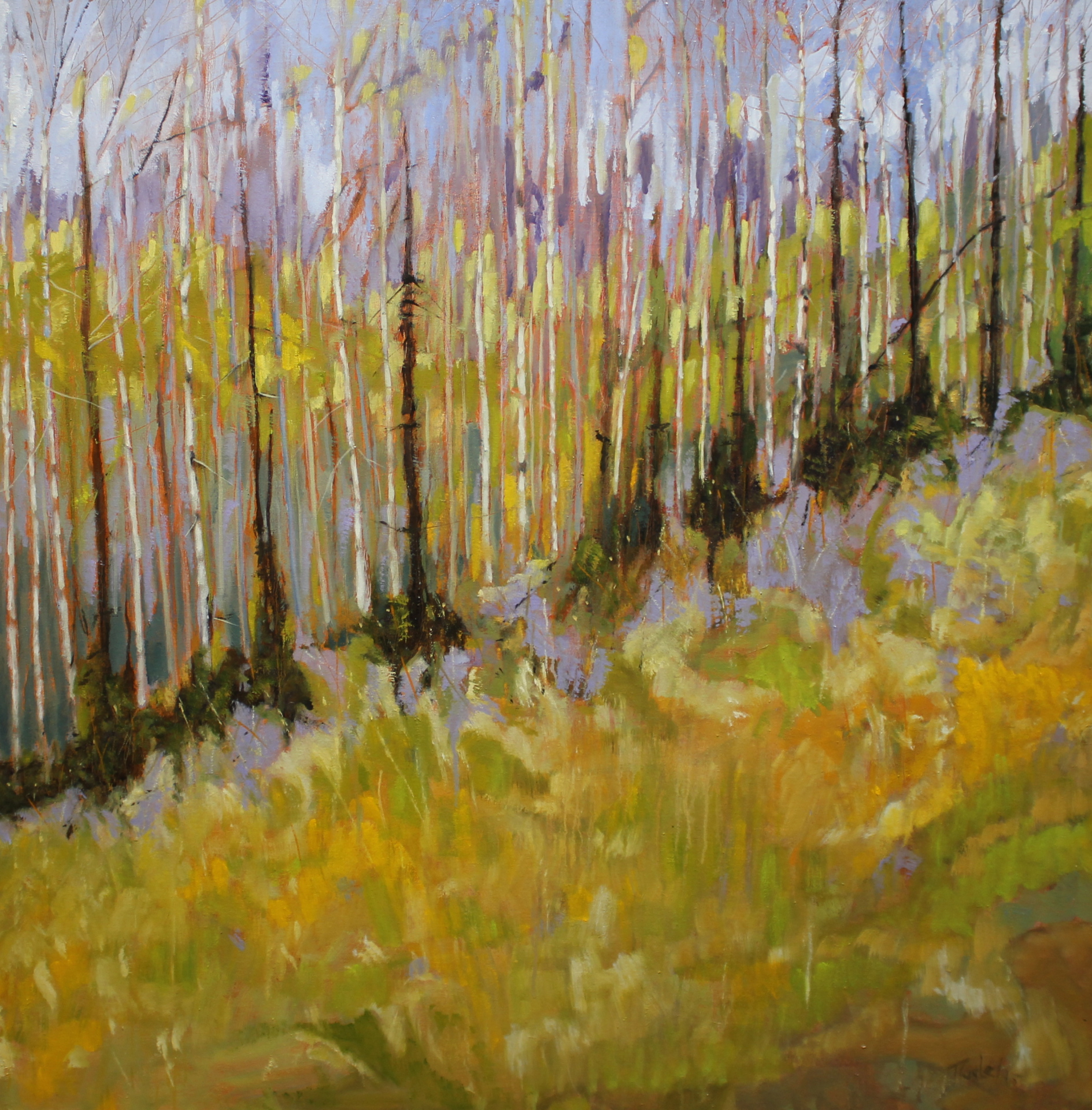 SPRINGS ETERNAL - 48X48 - OIL ON CANVAS - 2015