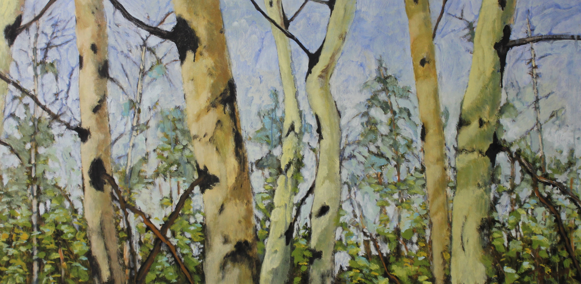 ASPEN SERIES - 24X48 - OIL ON PANEL - 2009