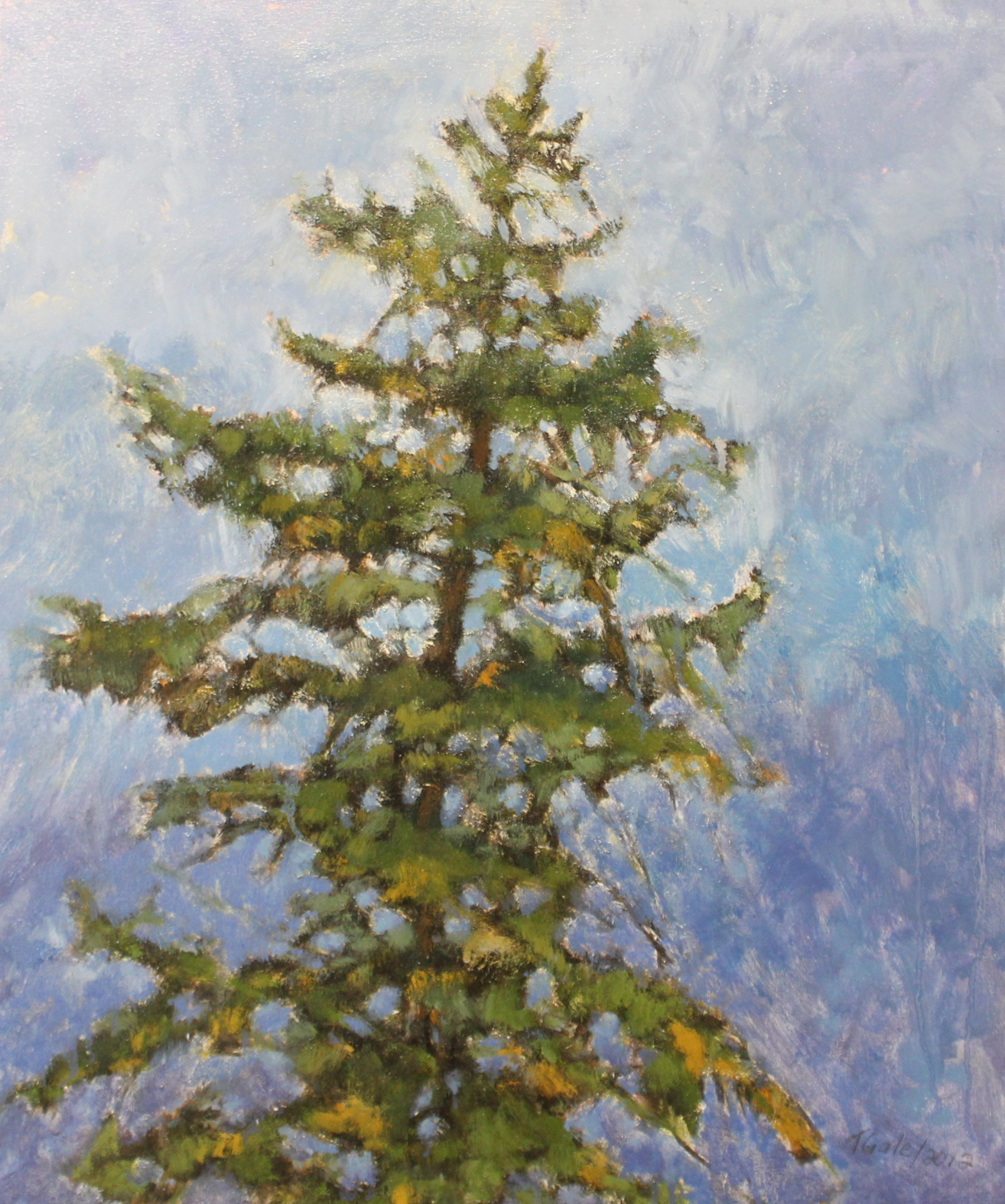 TREE TOPS ON COBALT - 20X24 - OIL ON CANVAS - 2012