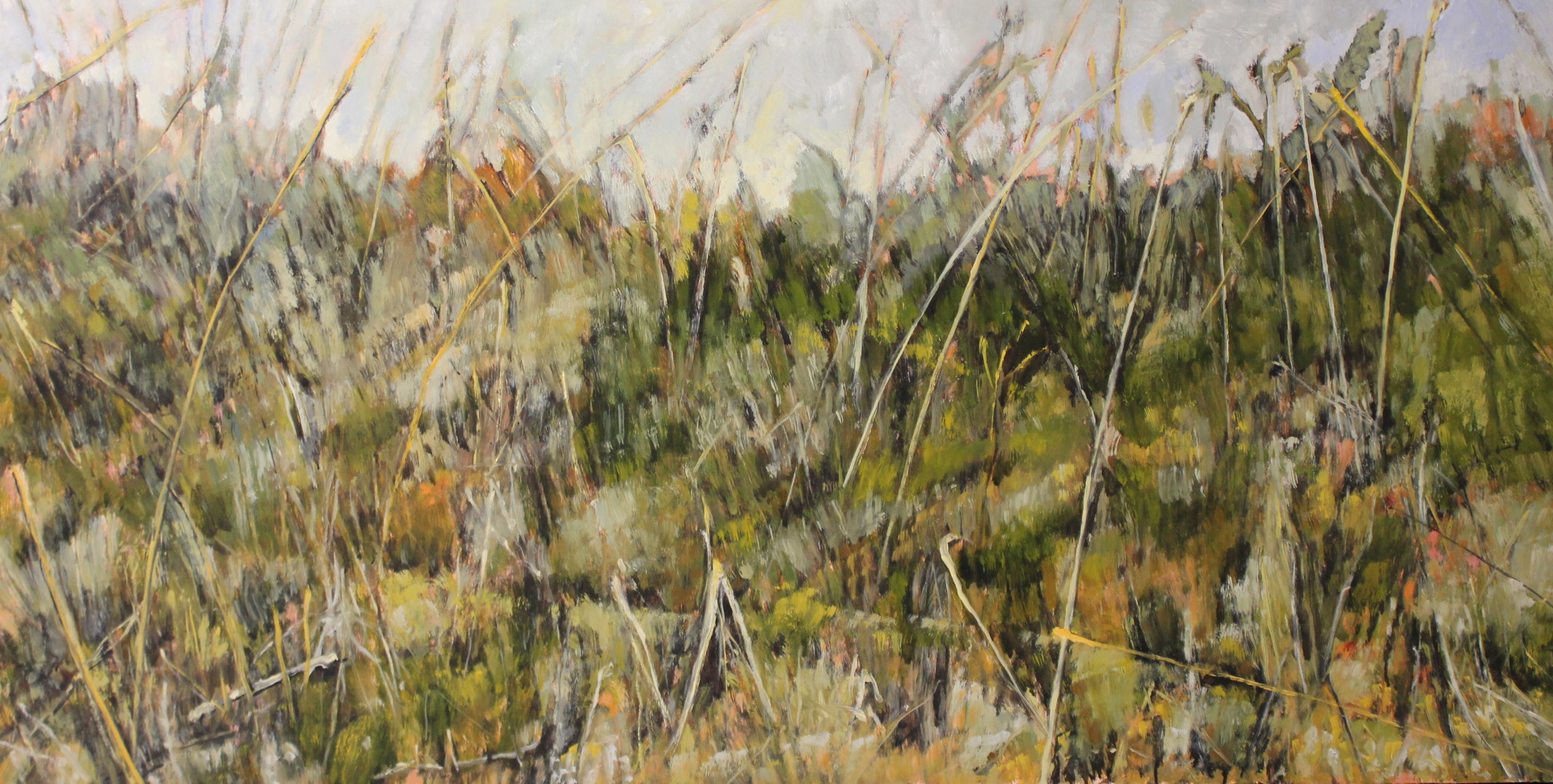 CYPRESS HILLS GRASSES - 25X49 - OIL ON PANEL - 2010