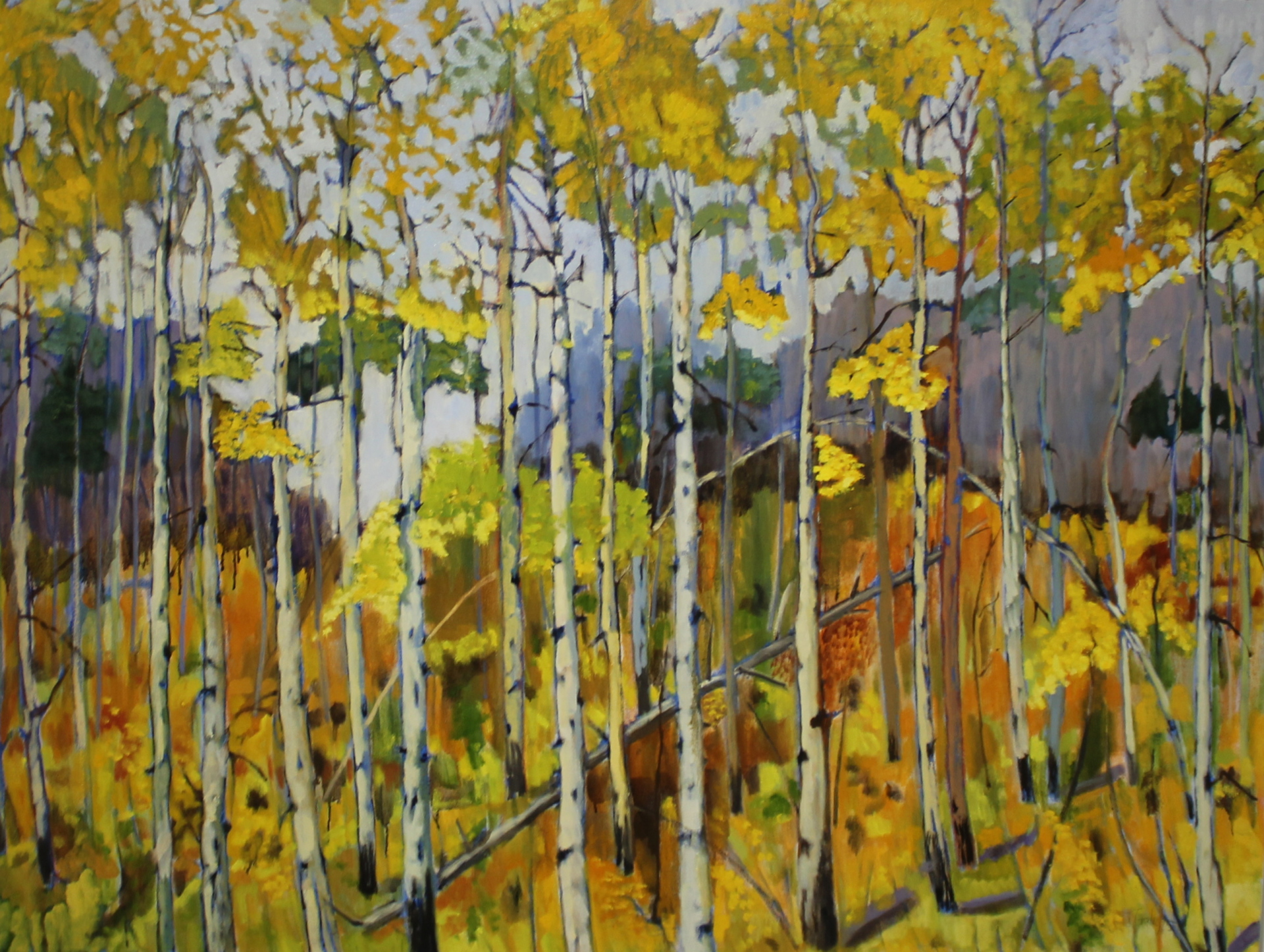 INDIAN SUMMER - 39X52 - OIL ON CANVAS - 2015