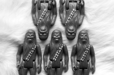 CHEWBACCAS - 20X30 - PHOTOGRAPH - 2016