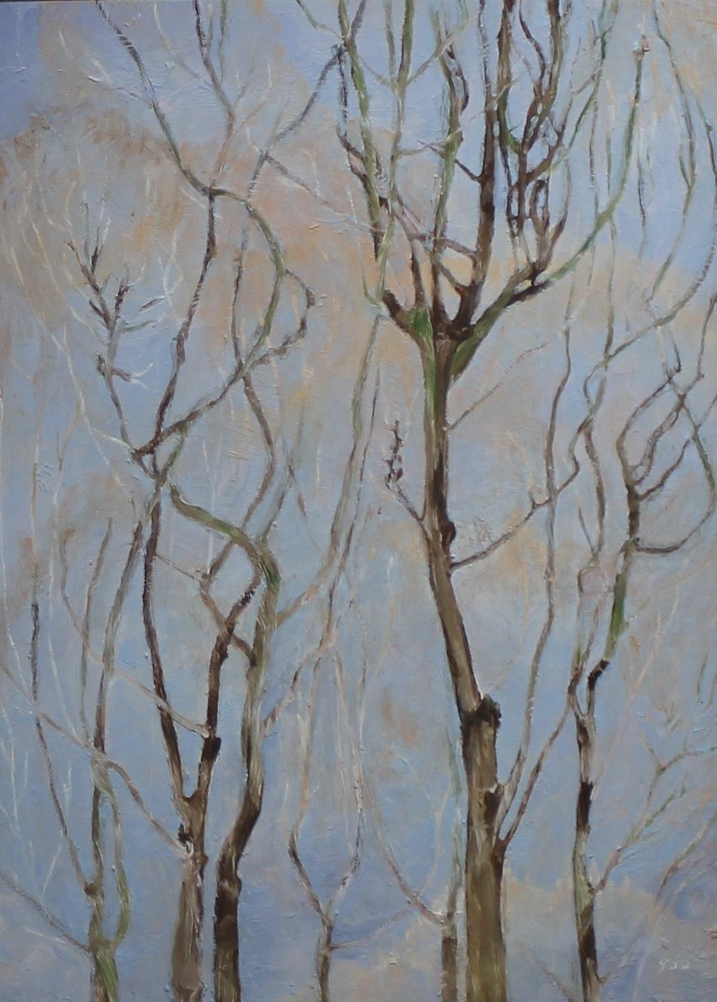 TREES ON BLUE - 25 X 18 - OIL ON PANEL - 2012