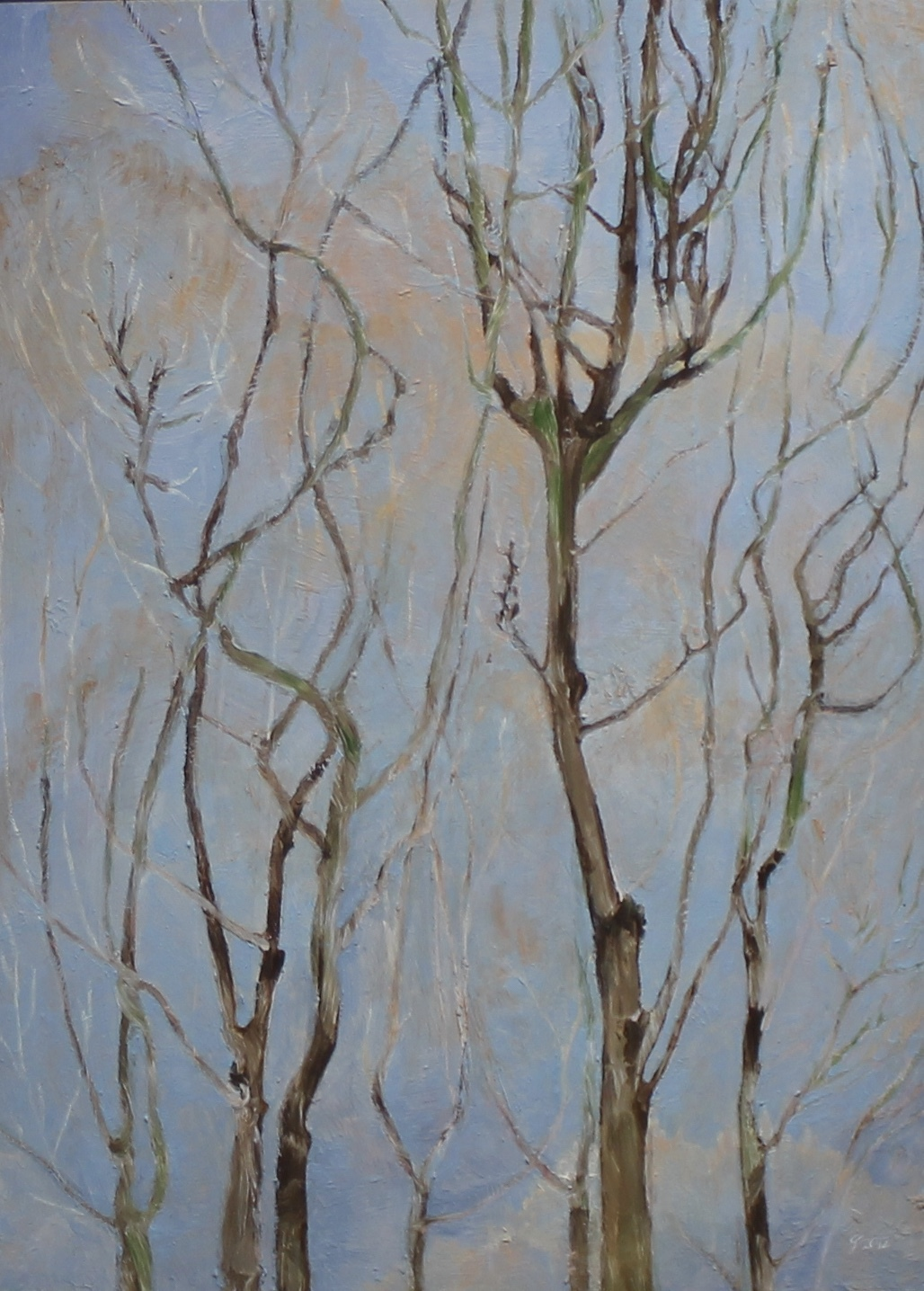 TREES ON BLUE - 25 X 18 - OIL ON PANEL - 2012