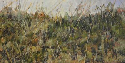 CYPRESS HILLS GRASSES - 25X49 - OIL ON PANEL - 2010