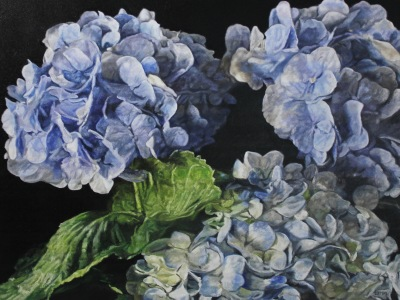 BLUE HYDRANGEAS II - 36X48 - OIL ON CANVAS - 2019