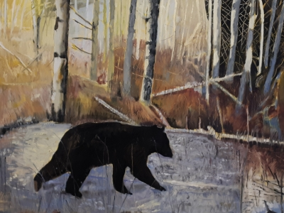 TOM'S BEAR - 30X40 - OIL ON CANVAS - 2019