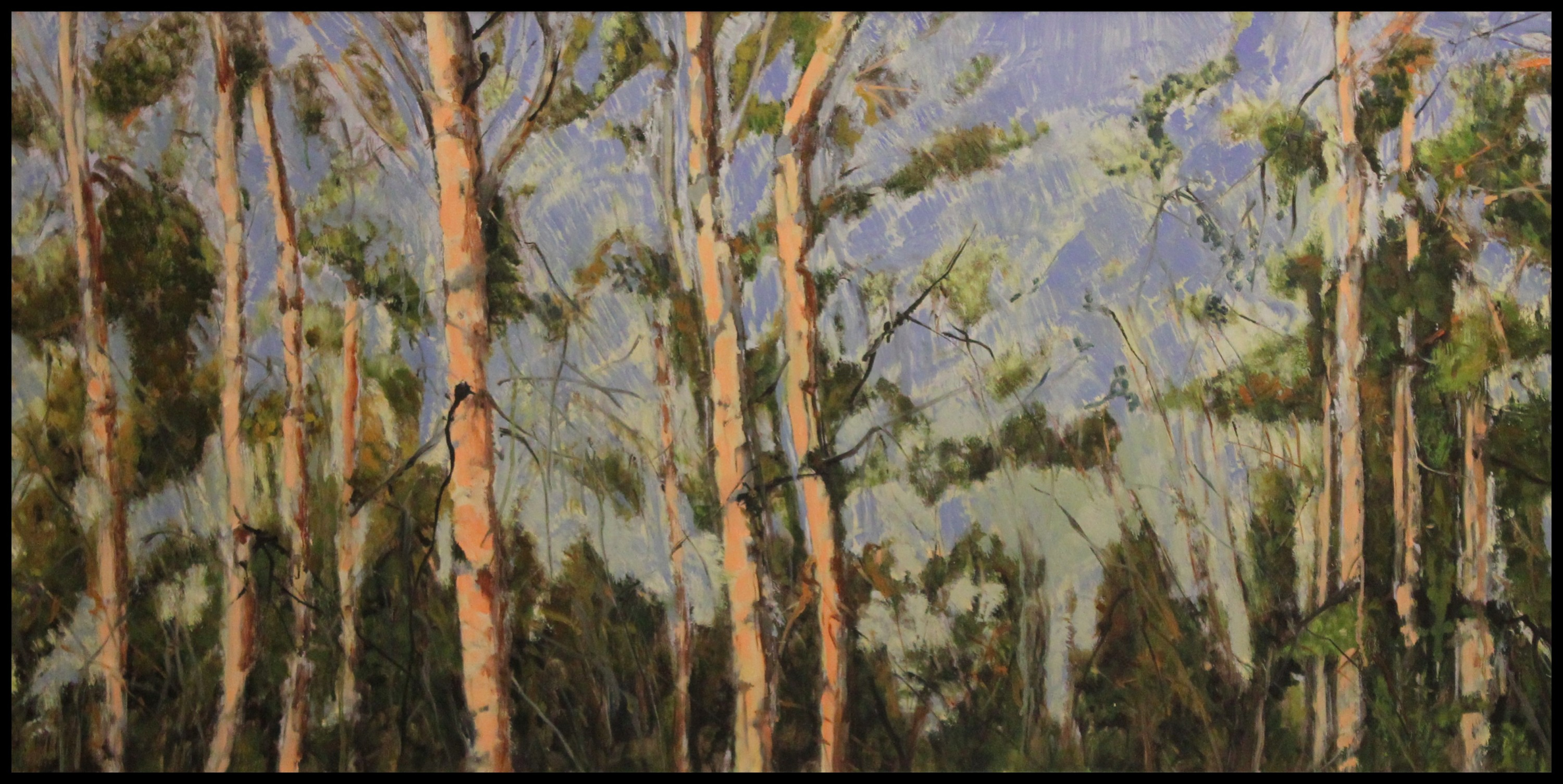 RIVER VALLEY ASPENS - 24X48 - OIL ON CANVAS - 2009