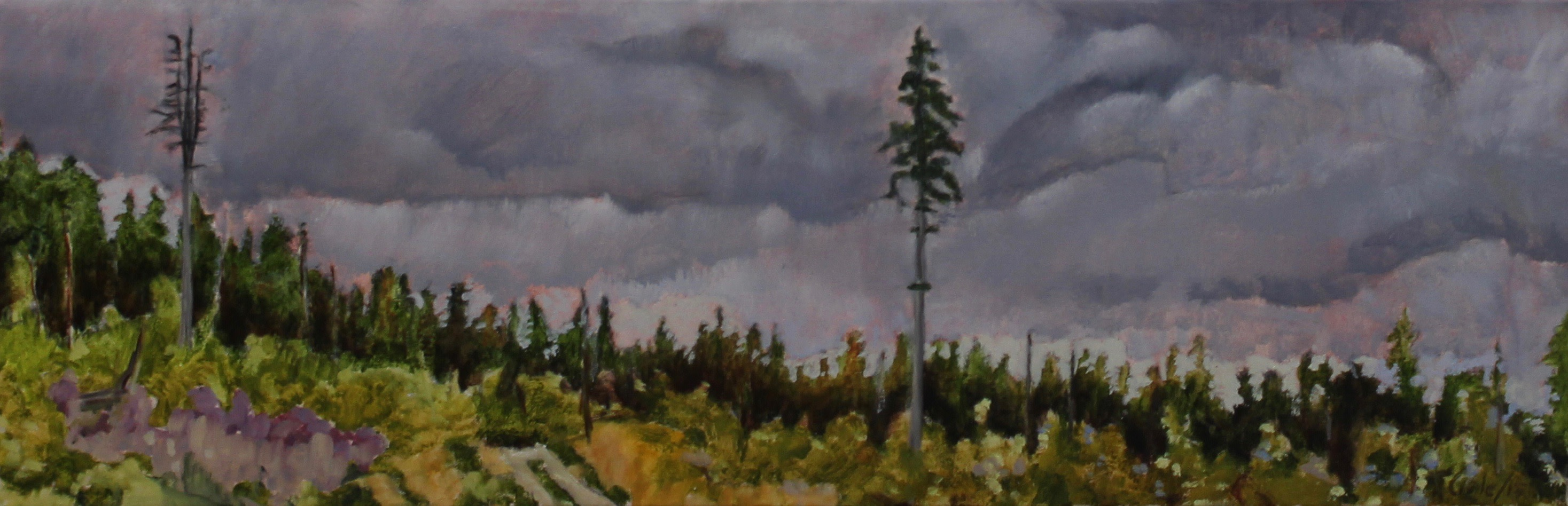 STUDY FOR EMILY'S TREE - 12X36 - OIL ON CANVAS - 2015