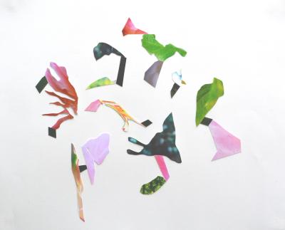 Pink Arps, 2015