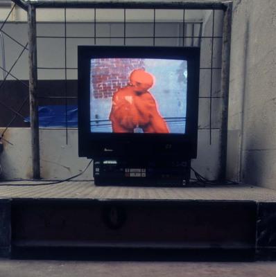 Fabula, 2000 (Collaboration with Anna Homler)
