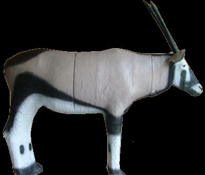 African 3D Gemsbuck