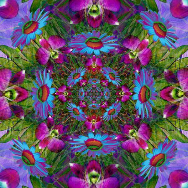 Floral Quadrangle