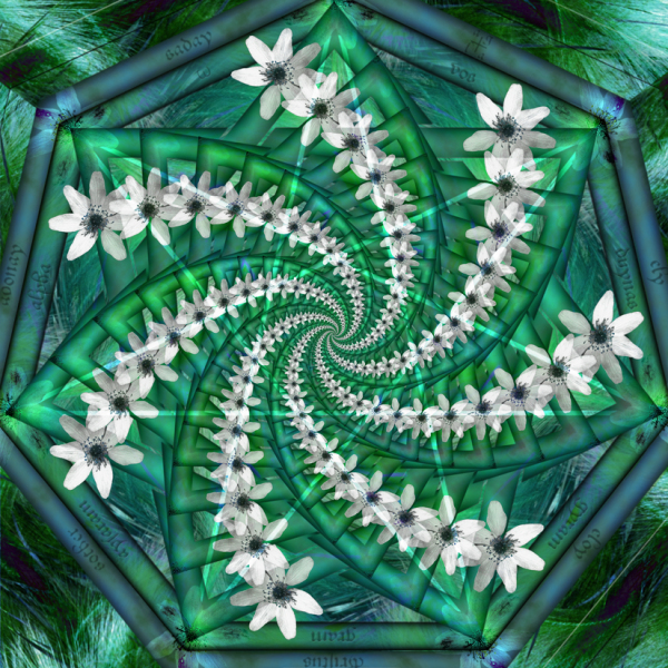 Mystical Anemones