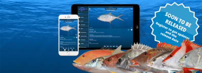 2016 - A exciting year for iDfish