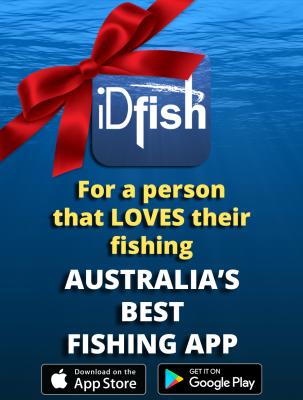 Merry Christmas from iDfish