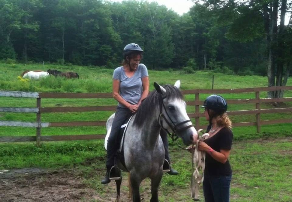 Professional Horse Training Services