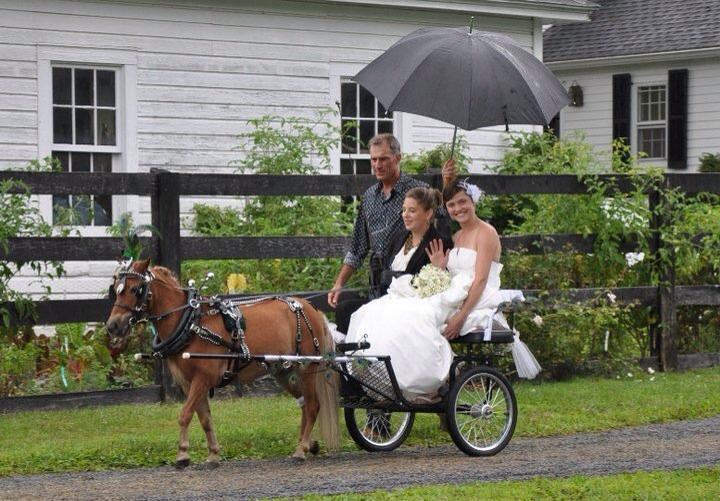Mercury Wedding