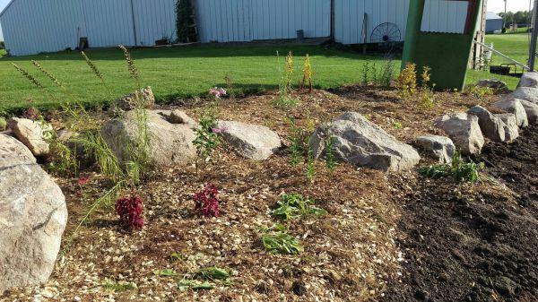 More garden! Thanks Southern Belle!