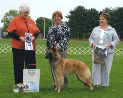 Reserve Winners - Dog