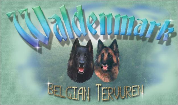 Waldenmark Tervuren