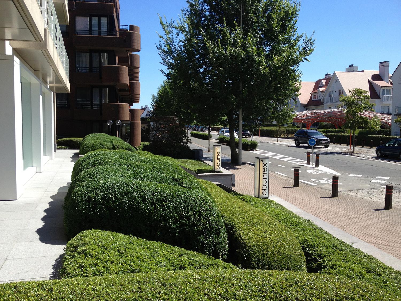 Commerciële & Publieke tuinen