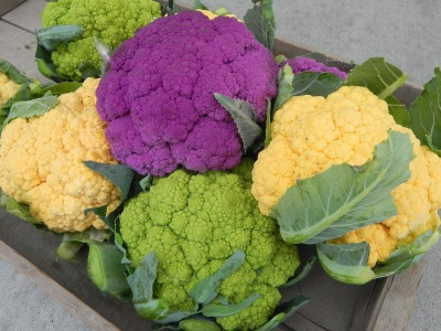 Calling all Cauliflower lovers!
