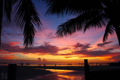 |Paradise Sunset|