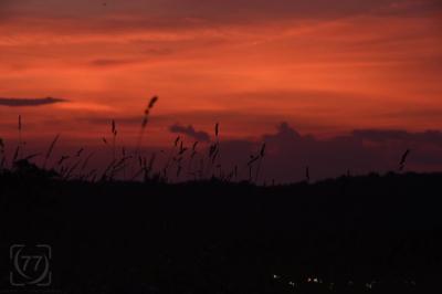 |Orange Sky|