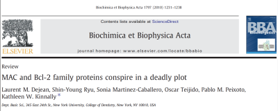 Biochim Biophys Acta. 2010