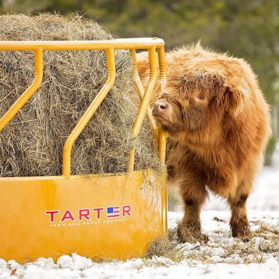Tarter Feeders