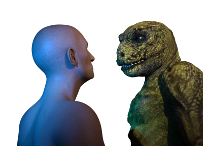 Lizard Human relations deteriorate