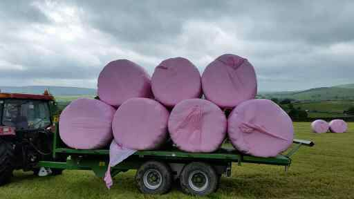 pink load of bales
