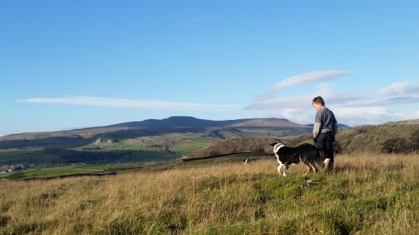 Shepherd, Yorkshire