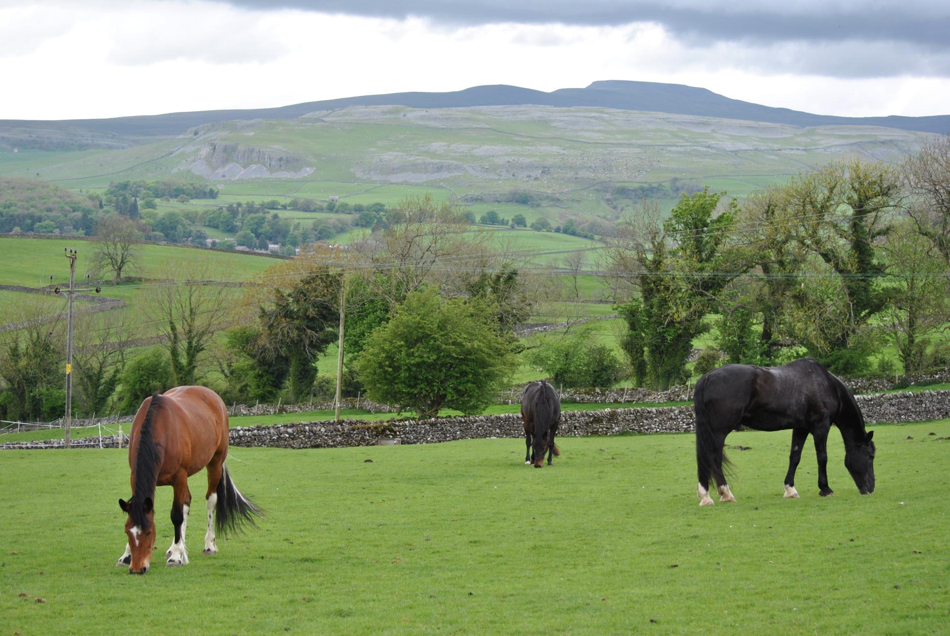 rawlinshaw, western, yorkshire