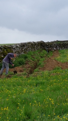 Then we place grass sods and soil over the cable