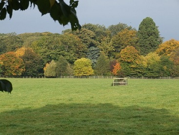 Autumn in Littlethorpe
