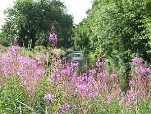 Canal looking towards Renton's Bridge