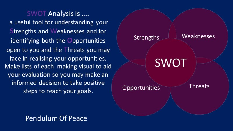 SWOT Analysis - Susan Stubbings