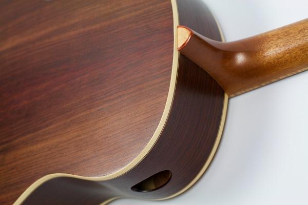 TS guitar