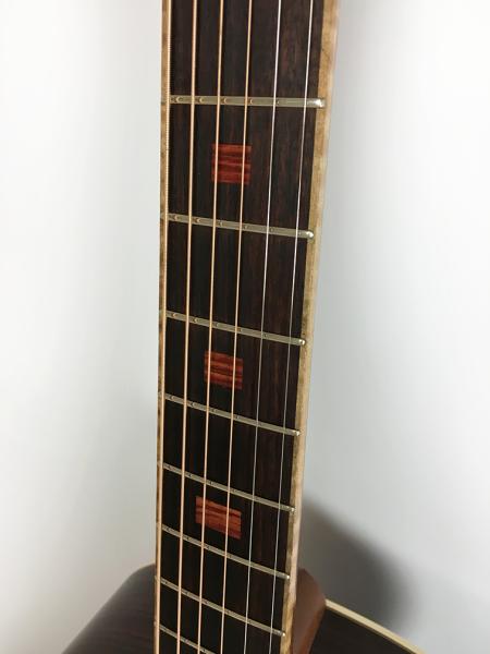TS guitar fretboard