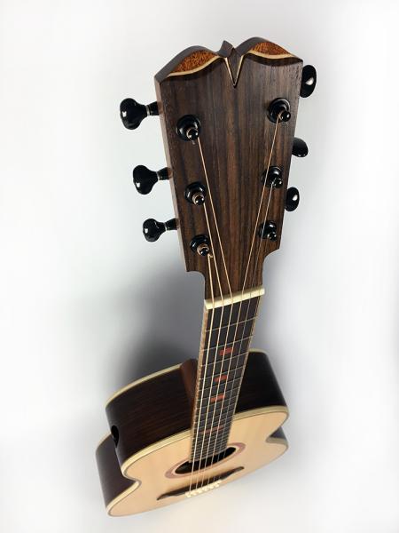 TS guitar headstock