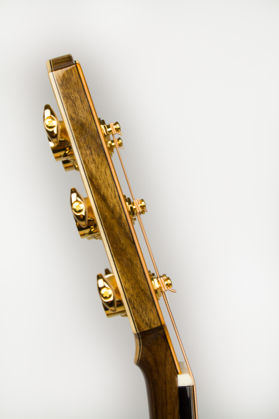 Yew and Sycamore Headstock veneers