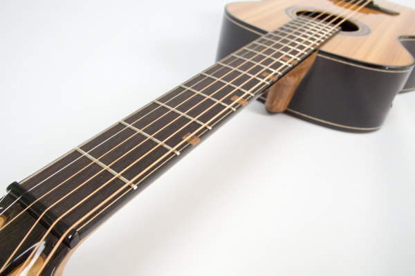 TS guitar fret board