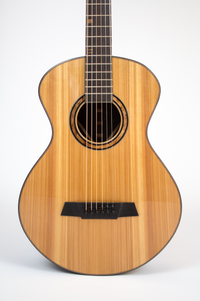 TS guitar front on zoom
